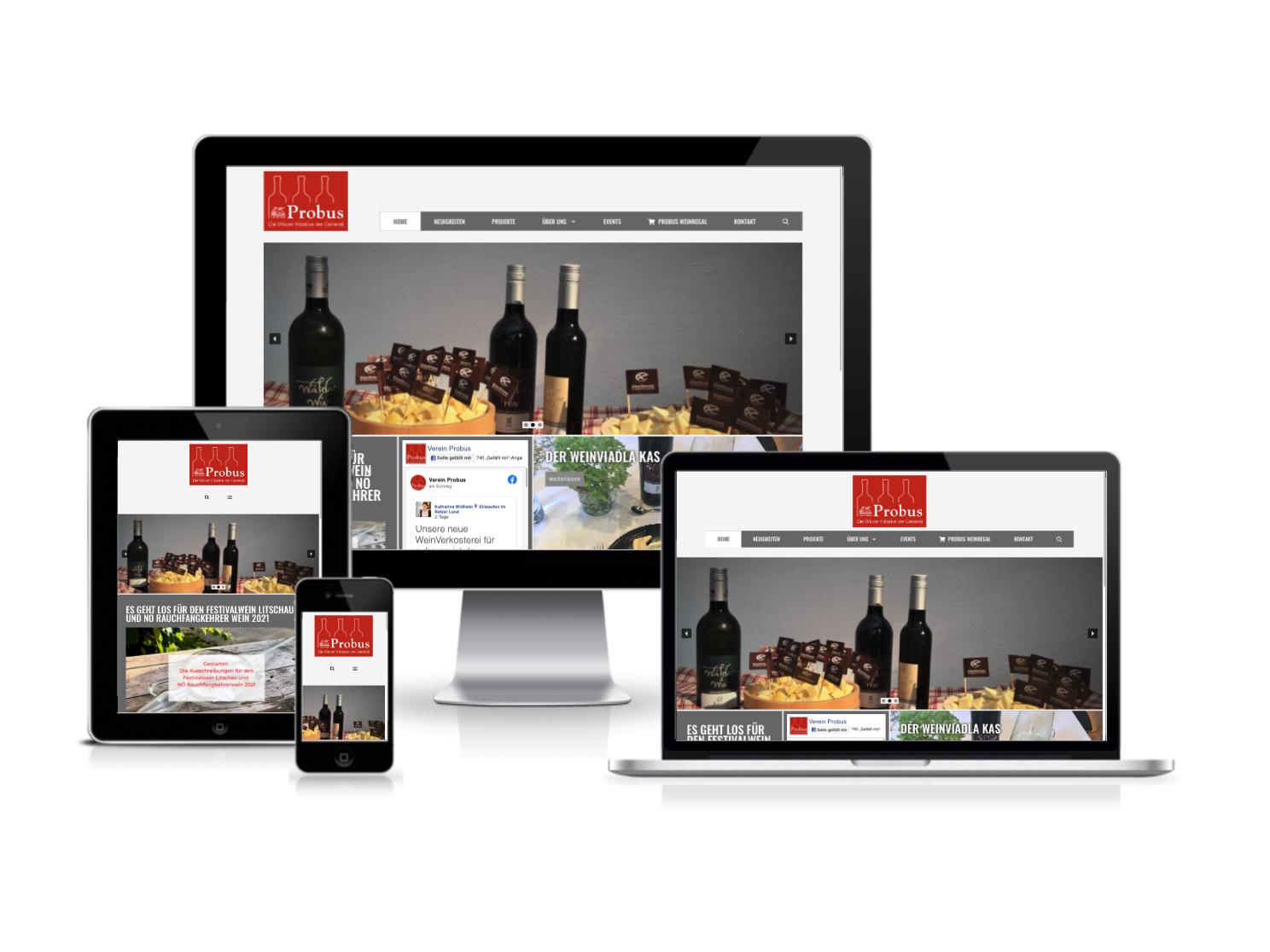Webdesign und Webprogrammierung für Probus